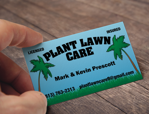 Plant Lawn Care Plant City, FL